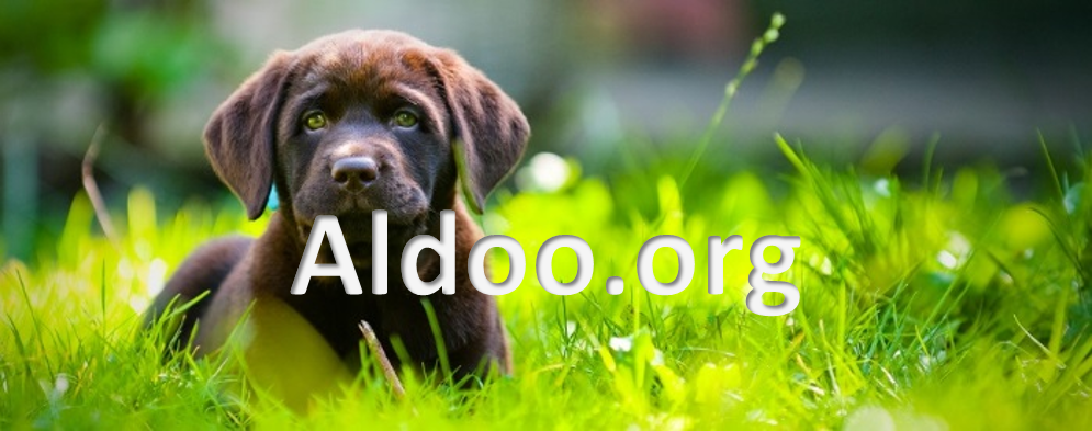 Ocu Glo by Aldoo.org home page photo
